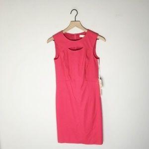 NWT Etcetera Singapore Pink A Line Dress